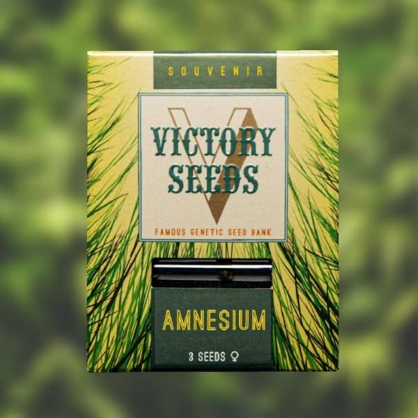 Amnesium